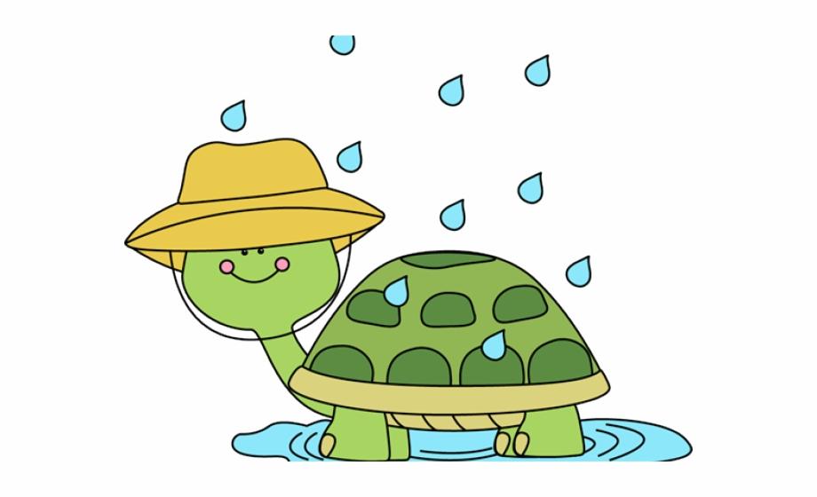 Clipart turtle spring. Winter cliparts rain clip