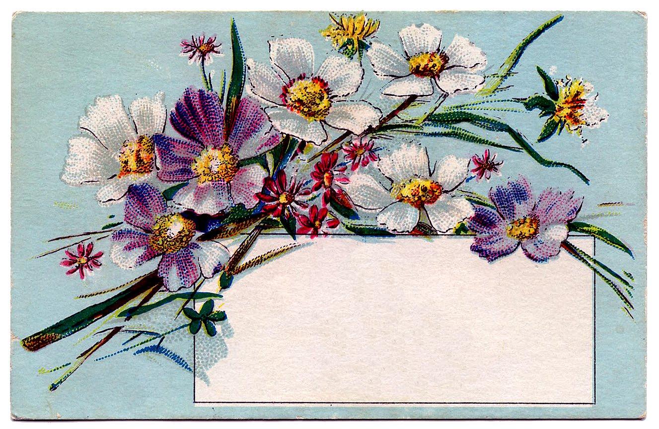 Card clipart flower. Vintage clip art pretty