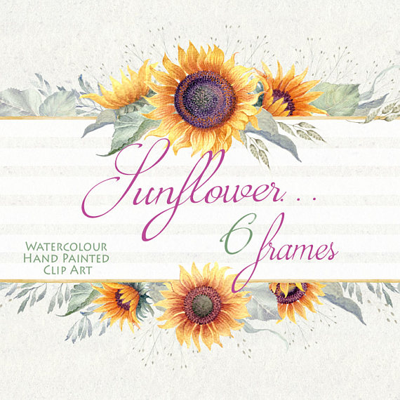Watercolor sunflower frames hand. Card clipart flower