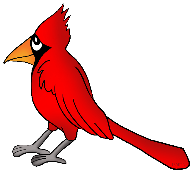 Cardinal clipart. United states clip art