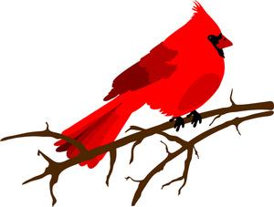 Cardinal clipart. Clip art illustration of
