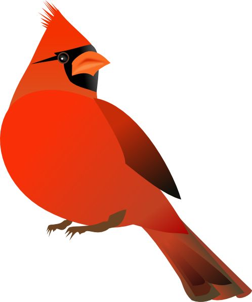 Cardinal clipart animated.  best clip art