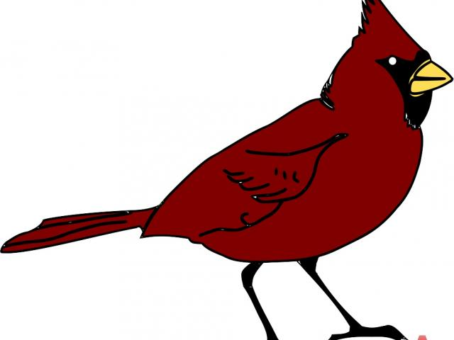 Cardinal clipart animated. Free on dumielauxepices net