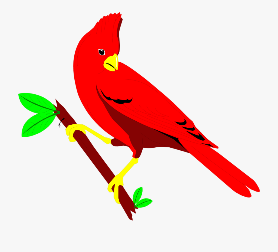 Red bird clip art. Cardinal clipart animated