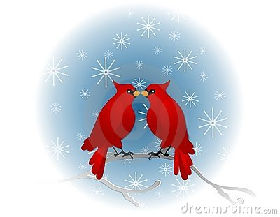 Winter red cardinals sitting. Cardinal clipart baby