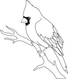 Cardinal clipart black and white. Rock art bird outline