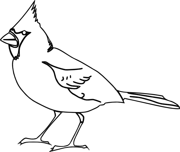 Outline clip art at. Cardinal clipart black and white