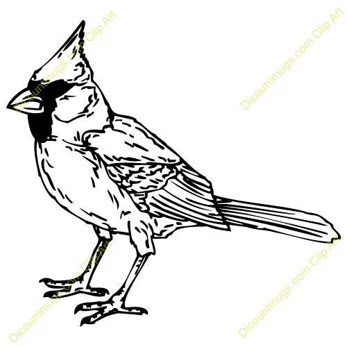Free download best on. Cardinal clipart black and white