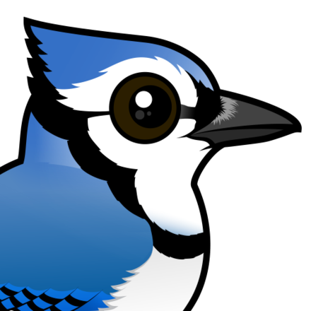 Cute by birdorable meet. Cardinal clipart blue jay