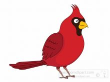 Cardinal clipart cardinal face. Free animal bird northern