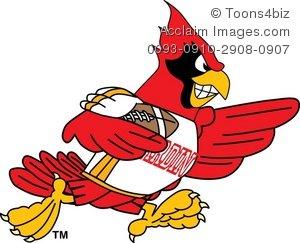 Cartoon playing . Cardinal clipart cardinal football
