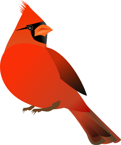 Cardinal clipart cartoon. Free bird download clip