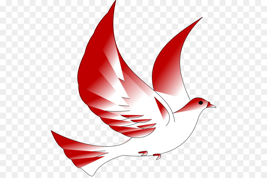 Columbidae confirmation in the. Cardinal clipart church