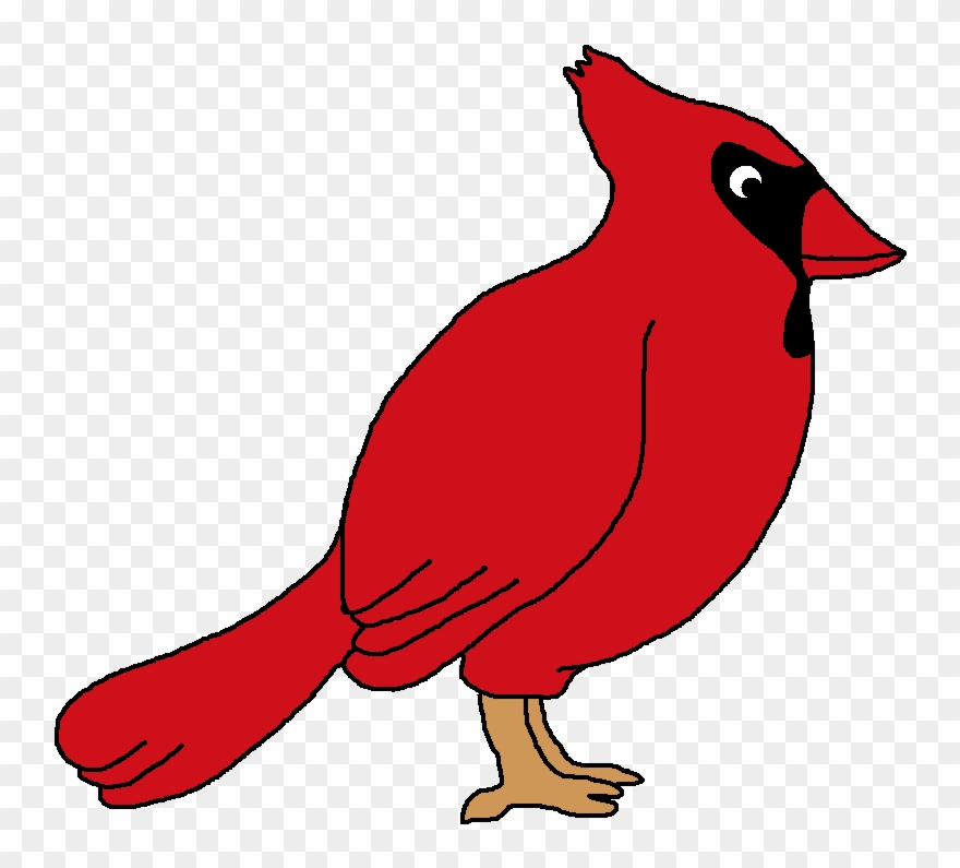 Free northern png . Cardinal clipart clip art