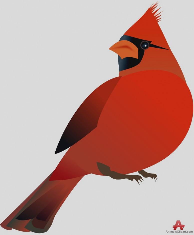 Trend free pictures clipartix. Cardinal clipart clip art