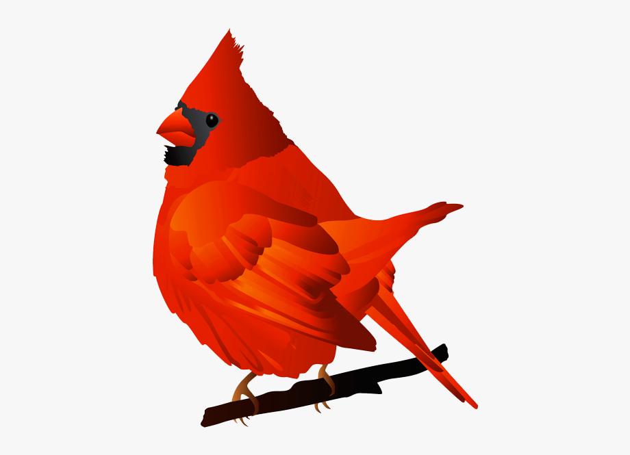 Free . Cardinal clipart clip art
