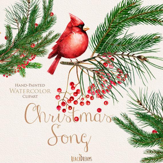Christmas birds red cardinals. Cardinal clipart decoration