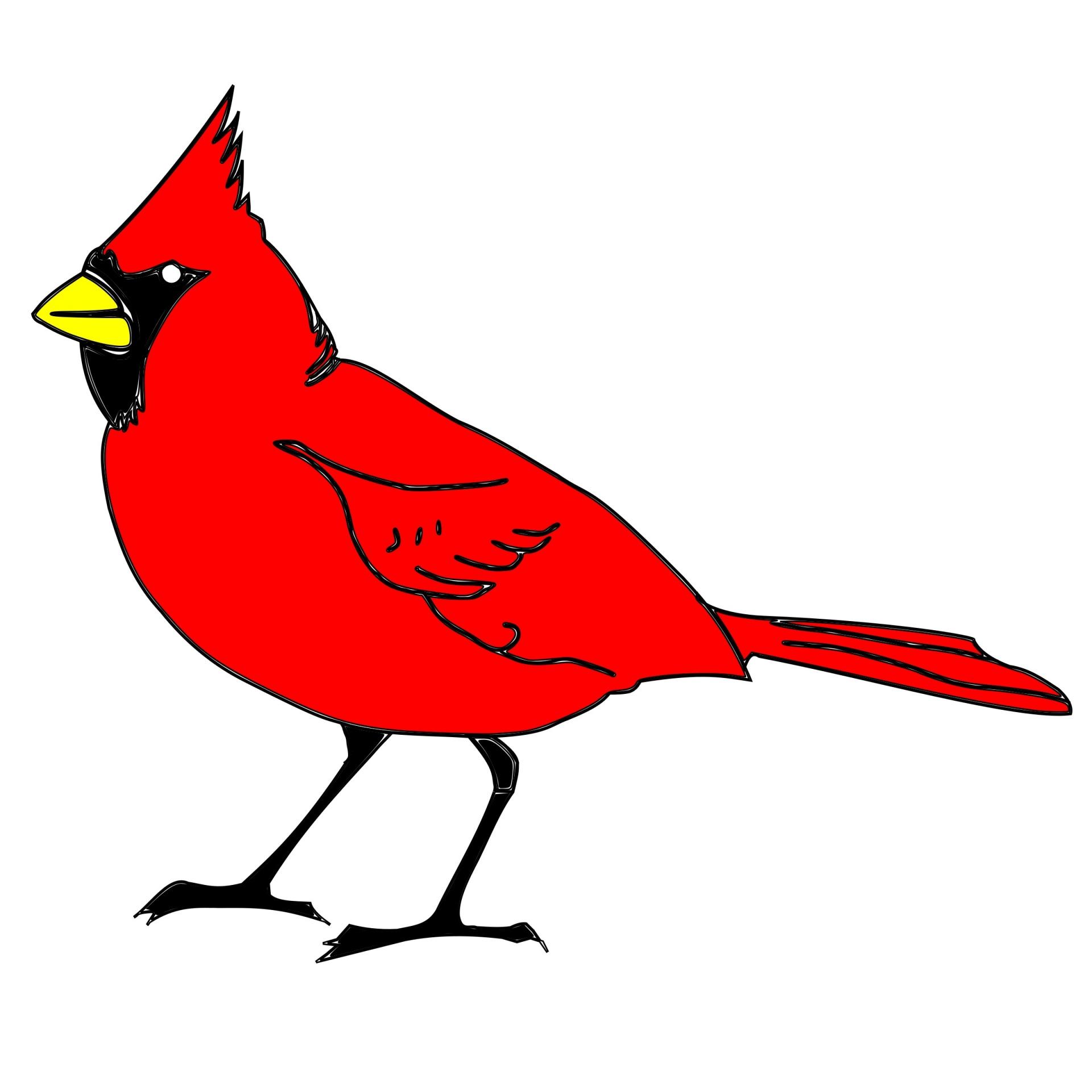 Bird art drawing free. Cardinal clipart drawn