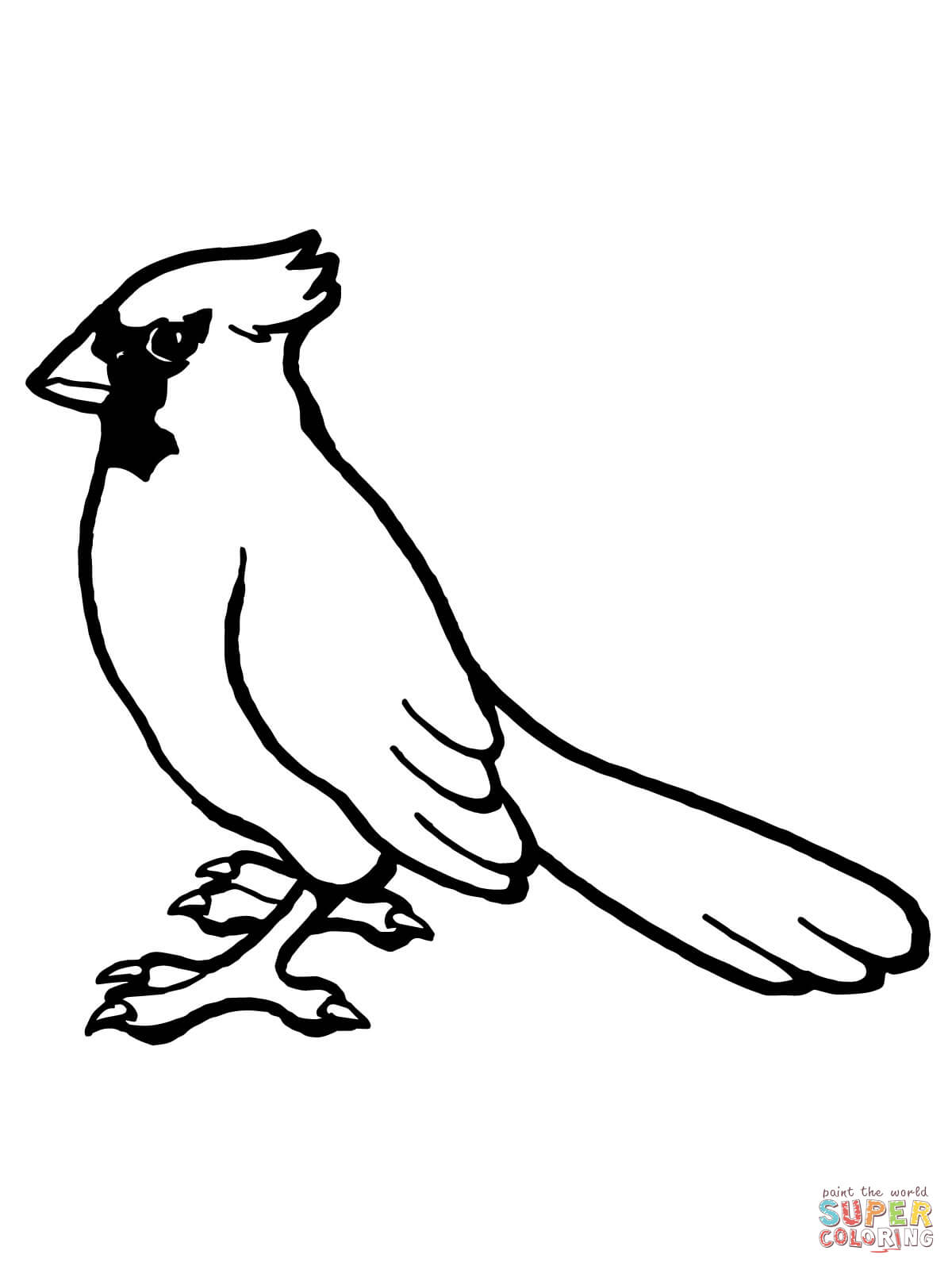 Cardinal clipart drawn. Nothern bird coloring page