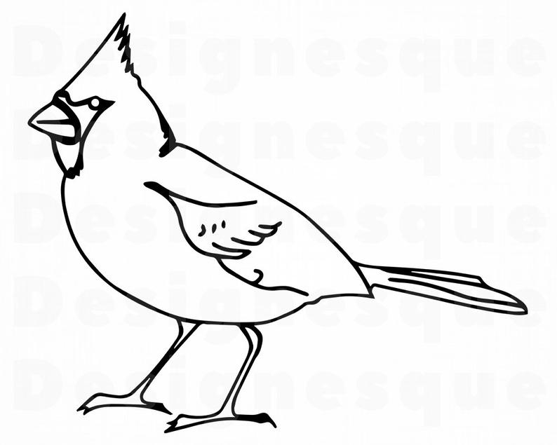 Cardinal clipart drawn. Bird drawing free download
