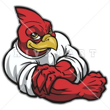 Mascot image of a. Cardinal clipart fighting