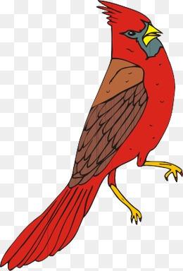 Bird png images vectors. Cardinal clipart file