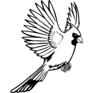 Cardinal clipart flying. Search results for angry
