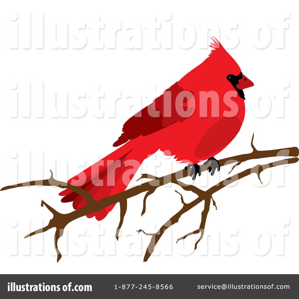 Cardinal clipart illustration. By pams royaltyfree rf