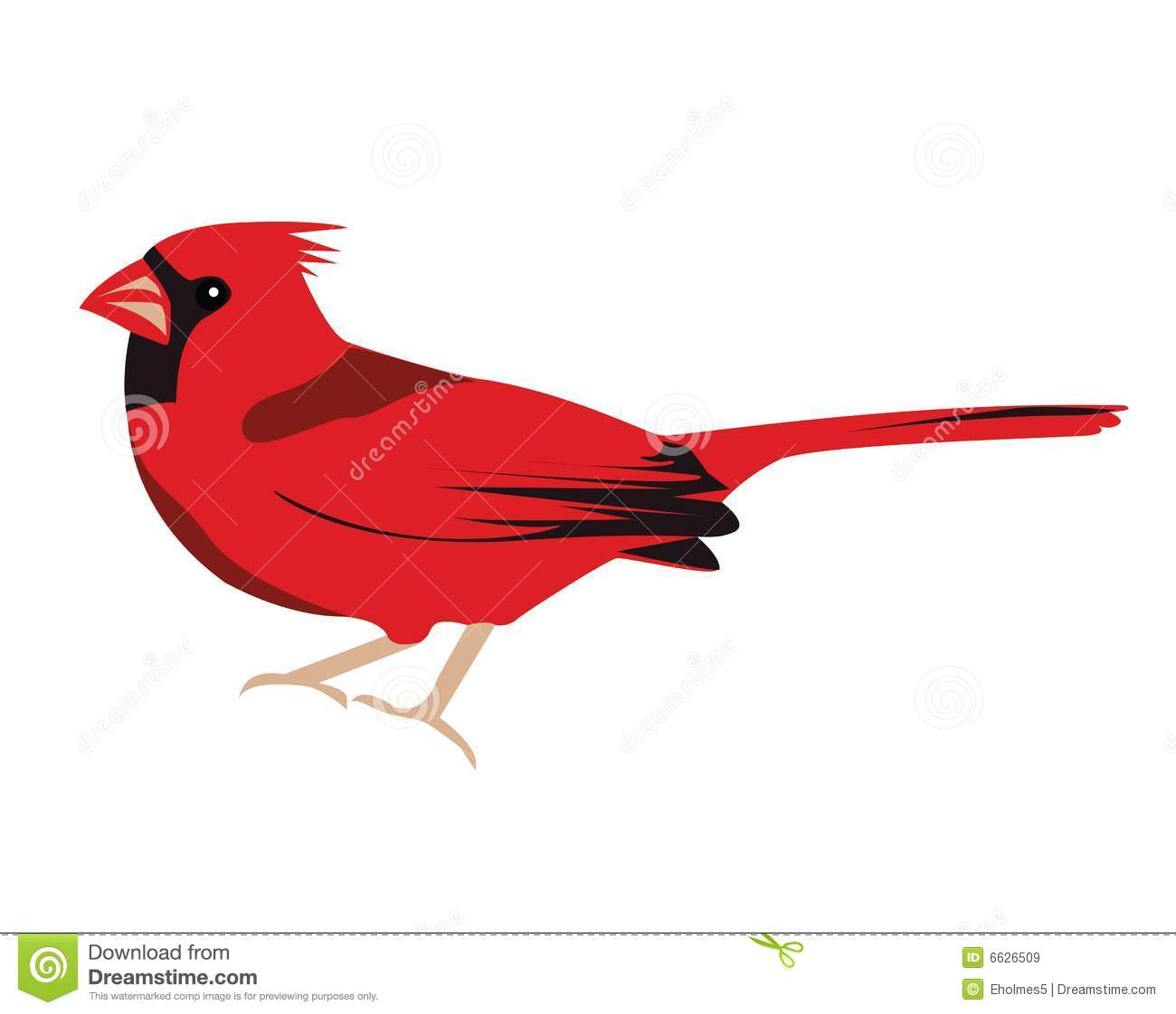 Cardinal clipart illustration. Free download best on