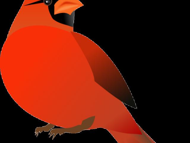 Cardinal clipart in flight. Clip art northern free