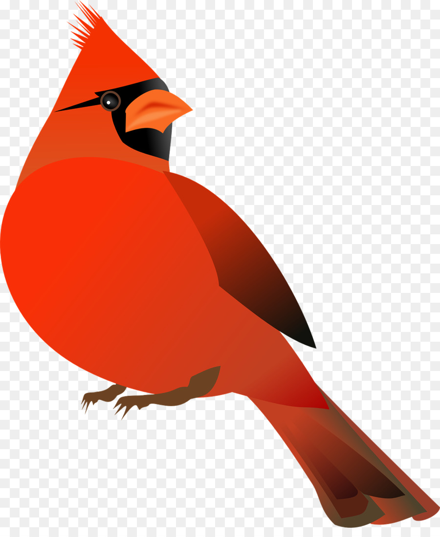 Cardinal clipart in flight. Northern st louis cardinals