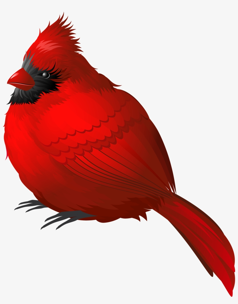 Cardinal clipart kingston. Download free png red