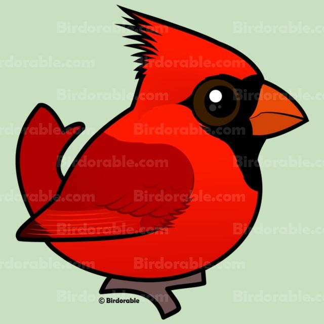 Northern throw blanket cute. Cardinal clipart male