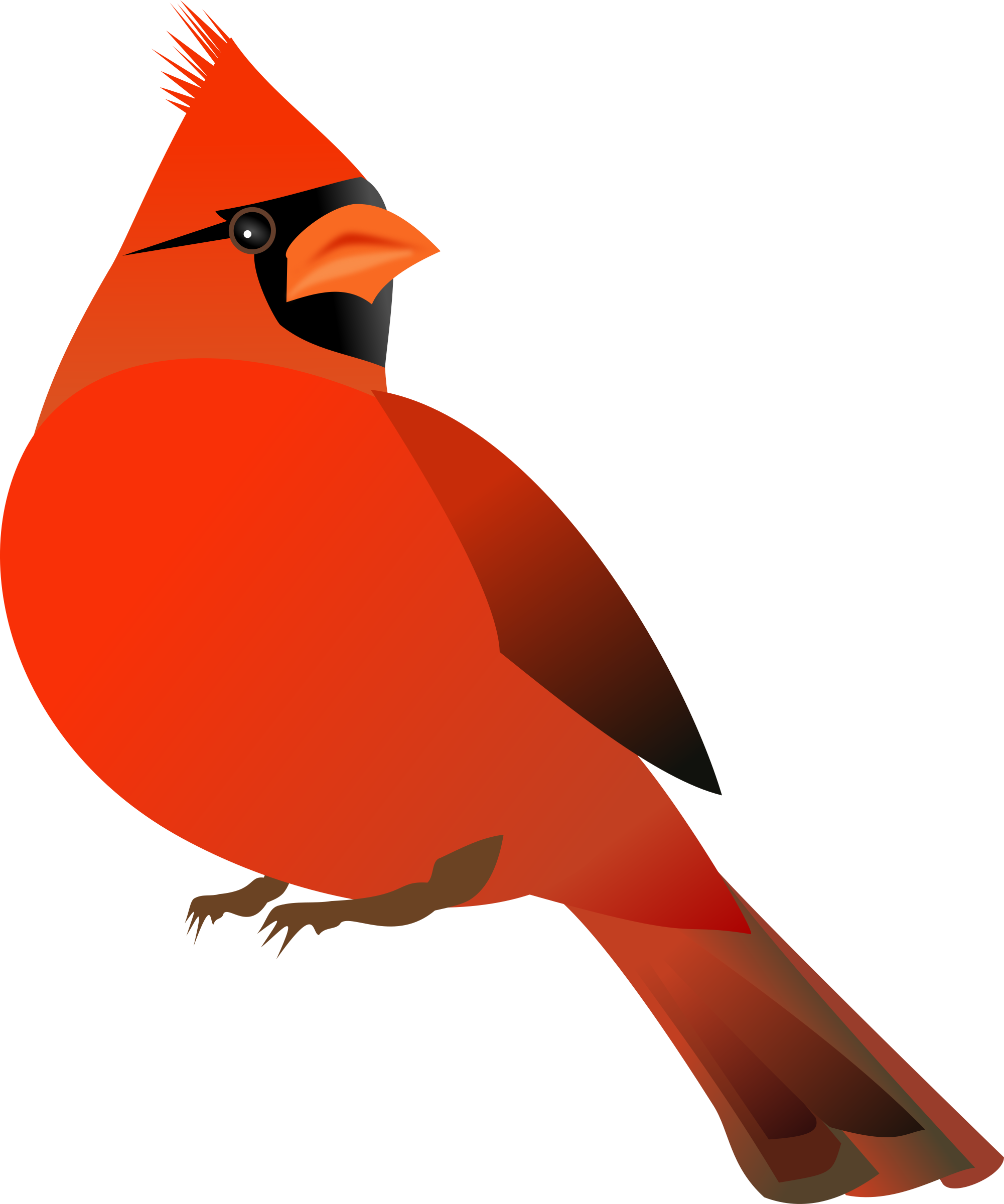 Cardinal clipart male. Red big image png