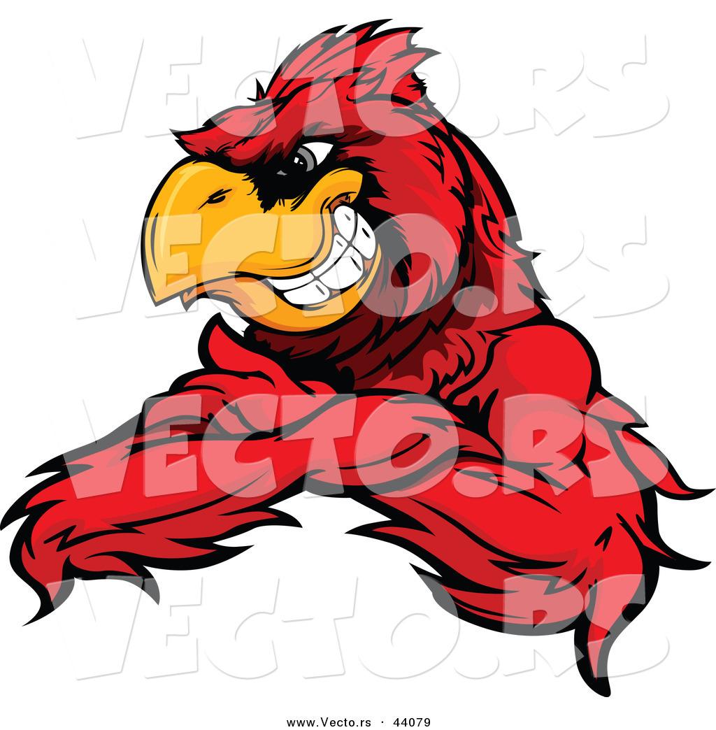 Cardinal clipart mascot. Bird