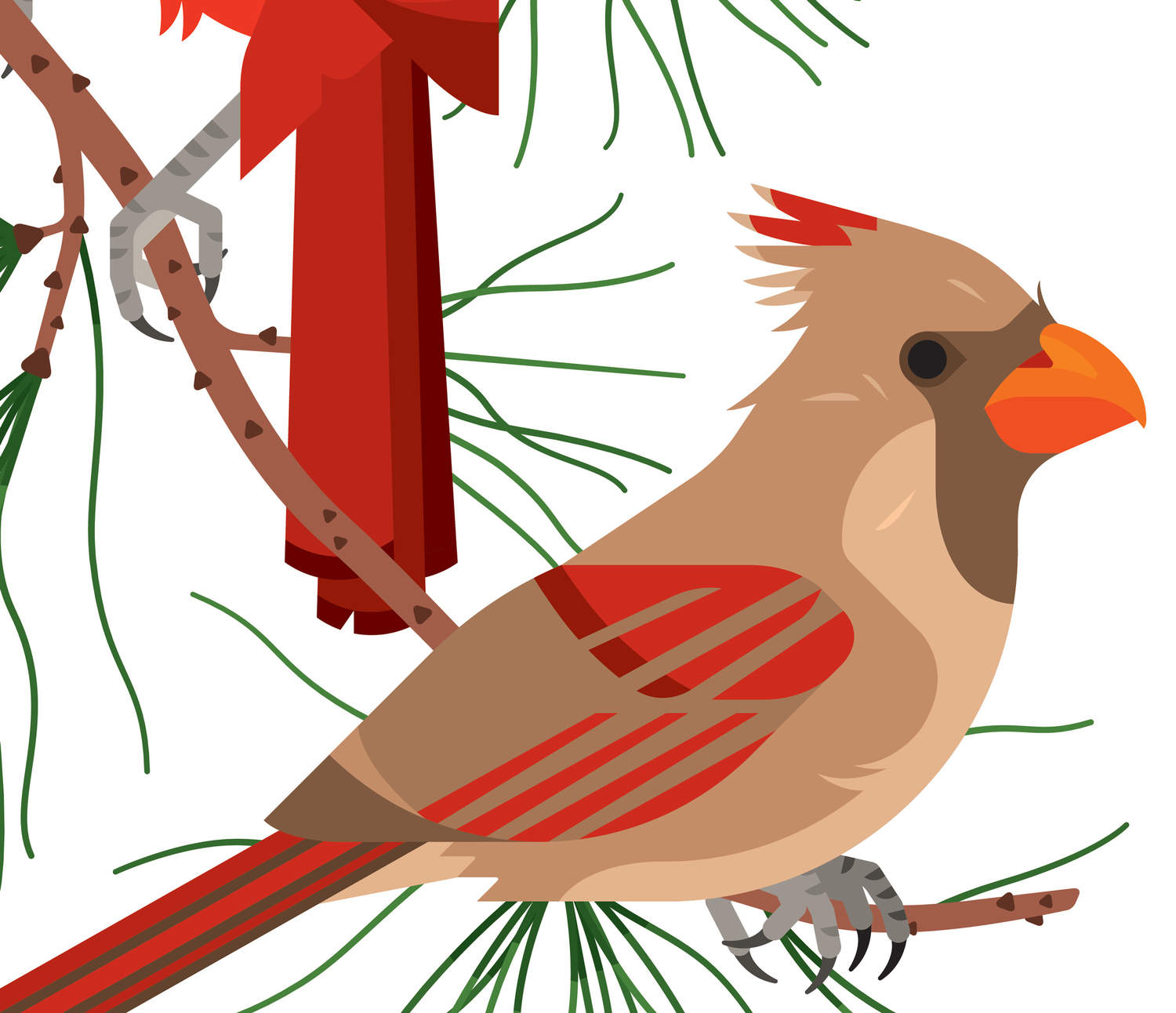 Cardinal clipart northern cardinal. Always with honor at