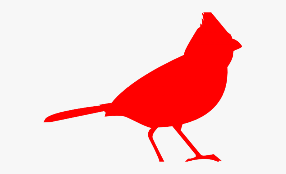 Cardinal clipart outline. Line drawing free