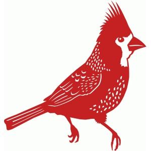 Free cliparts . Cardinal clipart printable