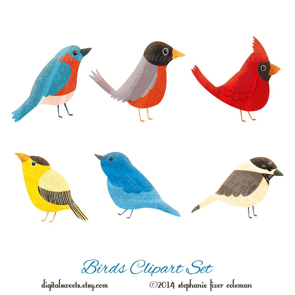 Cardinal clipart printable. Birds set instant download