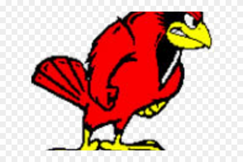 Illinois state redbirds hd. Cardinal clipart red robin