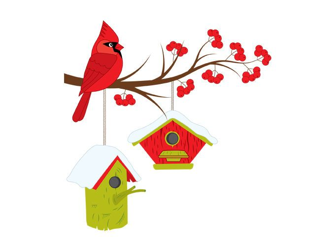 Christmas on branch digital. Cardinal clipart snow clipart