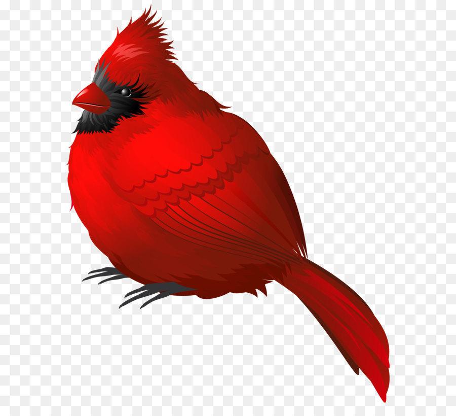 Cardinal clipart snow clipart. Winter bird clip art