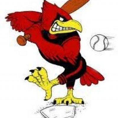 Plattsburgh cardssball twitter. Cardinal clipart softball