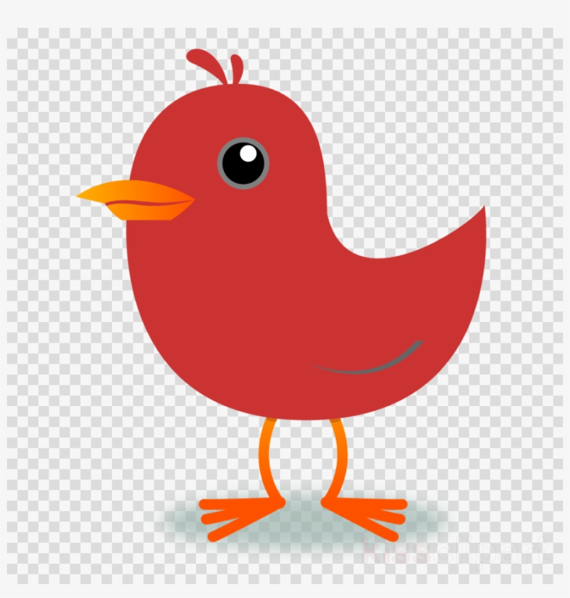 Cardinal clipart song bird. Red northern clip art