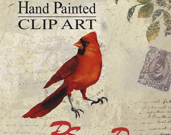 Cardinal clipart song bird. Songbird nature illustrations birds