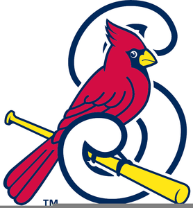 Cardinal clipart st louis cardinals. Free images at clker