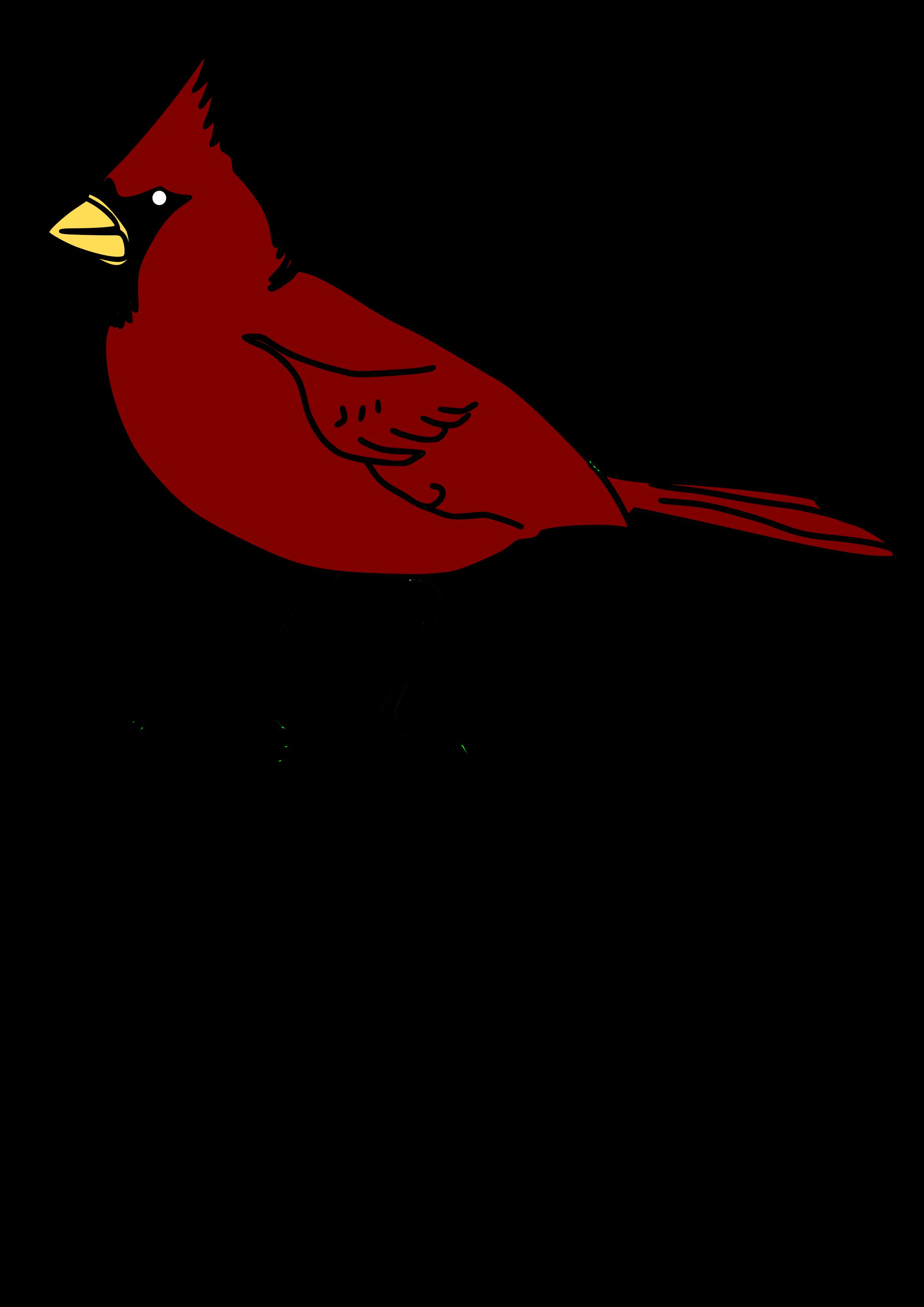 Cardinal clipart transparent background.