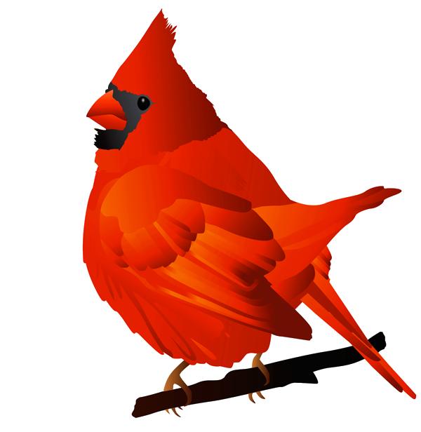 Cardinal clipart transparent background. Free clipartix