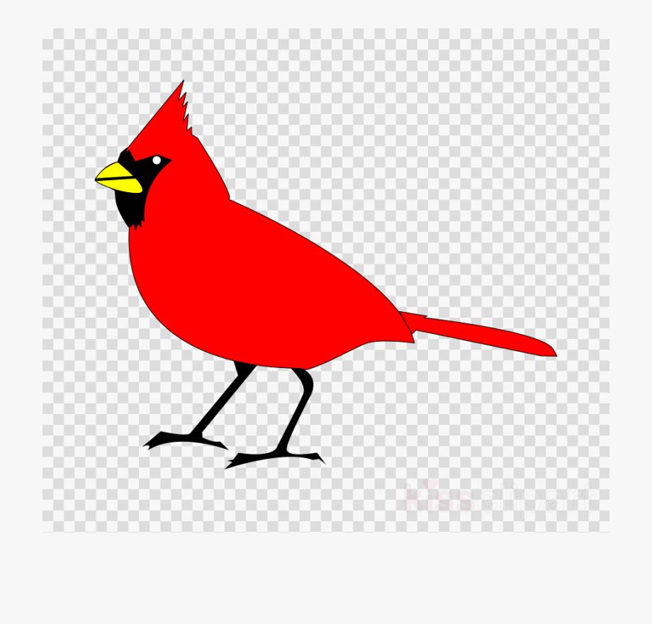 Cardinal clipart transparent background. Bird image northern