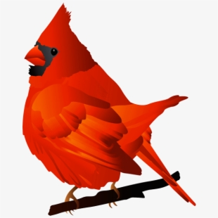 Cardinal clipart vector. Clip art the cliparts